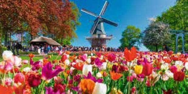 Nederland vroeg in bloei.
